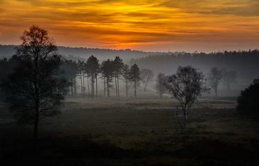 Pisberg in de mist
